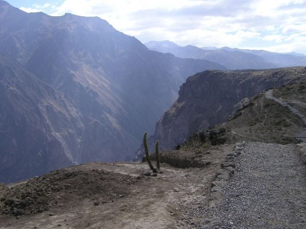 De Colca del Canyon is dieper dan de Grand Canyon.